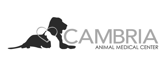cambria animal medical center